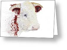 Sergeant Major Is A Hereford Bull Greeting Card