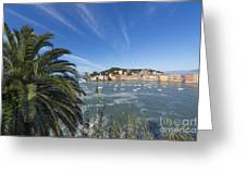 Sestri Levante With Palm Tree Greeting Card