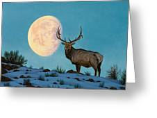 Setting Moon And Elk Greeting Card