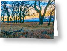 Setting Sun At Rocky Mountain Arsenal_1 Greeting Card by Tom Potter