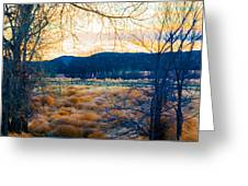 Setting Sun At Rocky Mountain Arsenal_2 Greeting Card by Tom Potter