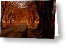 Setting Sun On Country Road Greeting Card