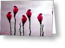 Seven Birds Of Red Greeting Card