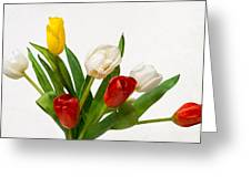 Seven Tulips - Four Colors Greeting Card