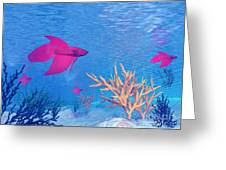 Several Red Betta Fish Swimming Greeting Card