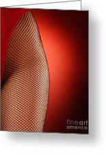Sexy Woman Hips In Fishnet  Greeting Card