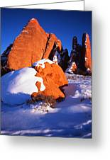 Sh-arch Fins Greeting Card by Ray Mathis