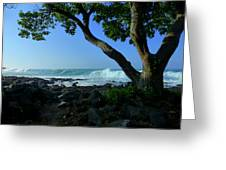Shade On The Shore Greeting Card