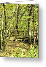 Shades Mountain Bridge In The Forest Greeting Card