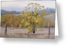 Shades Of Autumn Greeting Card