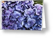Shades Of Blue Greeting Card by Tanya Jacobson-Smith