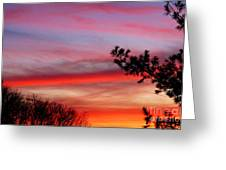 Shades Of Sunset Greeting Card