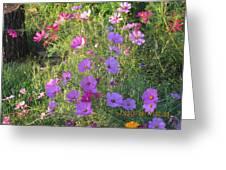 Shades Of Tiny Pinks Greeting Card