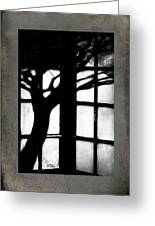 Shadow Greeting Card by Bobbi Feasel