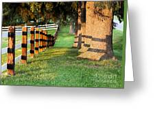 Shadow Fencing Greeting Card