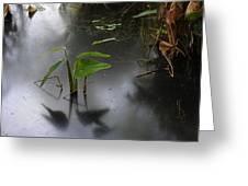 Shadow Mirror Reflection Greeting Card