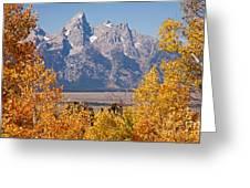 Shadow Mountain Grand Teton National Park Greeting Card