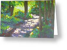 Shadowed Path Greeting Card