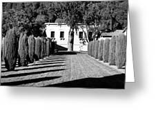 Shadows At Clos Pegase Winery Greeting Card