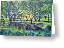 Shadows At Noon - Indian Landscapes Greeting Card
