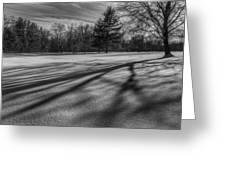 Shadows In The Park Greeting Card
