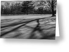 Shadows In The Park Square Greeting Card