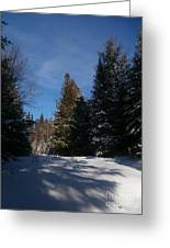 Shadows In The Snow Greeting Card by Steven Valkenberg