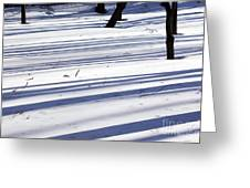 Shadows Lines On Snow In Park Greeting Card