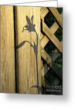 Shadows Of Life Greeting Card