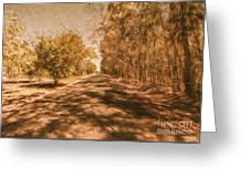 Shadows On Autumn Lane Greeting Card