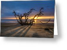 Shadows On The Sand Greeting Card