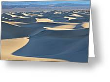 Shadows Over The Dunes Greeting Card