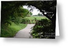 Shady Path Greeting Card