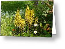 Shafts Of Yellow Greeting Card
