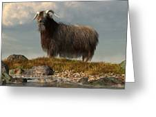 Shaggy Goat Greeting Card