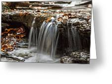 Shale Creek In Autumn Greeting Card