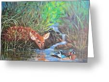 Sharing The Pond Greeting Card