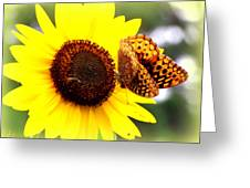 Sharing The Sunflower Greeting Card