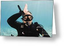 Shark Alert  Greeting Card