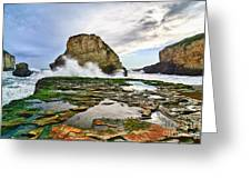 Shark Fin Cove Greeting Card by Jamie Pham
