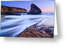 Shark Fin Tide - Santa Cruz California Greeting Card by Jamie Pham