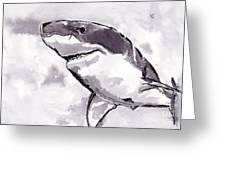 Shark Greeting Card by Michael Rados