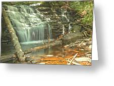 Shawnee Falls At Ricketts Glen Greeting Card