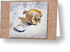 She Sells Sea Shells Decorative Collage Greeting Card