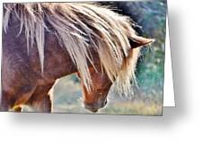 She Tossed Her Mane - Wild Pony Of Assateague Greeting Card