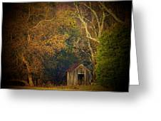 Shed And Trees Greeting Card by Joyce Kimble Smith