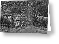 Shed Bw Greeting Card