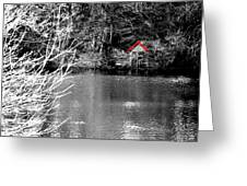 Shed On The Lake Greeting Card