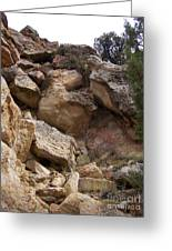 Sheep Creek Canyon Wyoming 8 Greeting Card