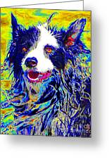 Sheep Dog 20130125v1 Greeting Card by Wingsdomain Art and Photography